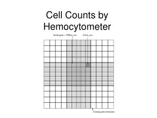 Cell Counts by Hemocytometer