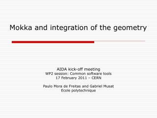 Mokka and integration of the geometry