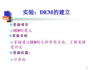 实验: DEM 的建立