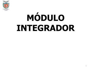 MÓDULO INTEGRADOR