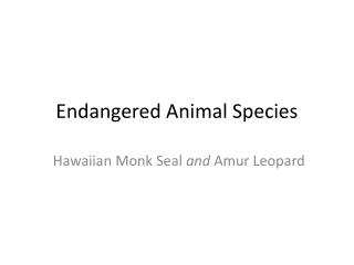 Endangered Animal Species