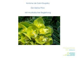 Antoine de Saint-Exup ry  Der kleine Prinz   Mit musikalischer Begleitung