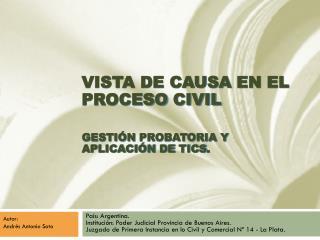 VISTA DE CAUSA  EN  EL PROCESO  CIVIL GESTIÓN  PROBATORIA y  APLICACIÓN DE  TICs .
