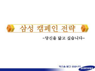 삼성 캠페인 전략