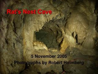 Rat�s Nest Cave