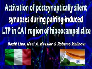 Activation of postsynaptically silent  synapses during pairing-induced