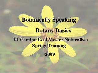 Botanically Speaking       Botany Basics    El Camino Real Master Naturalists Spring Training