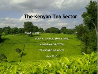 The Kenyan Tea Sector