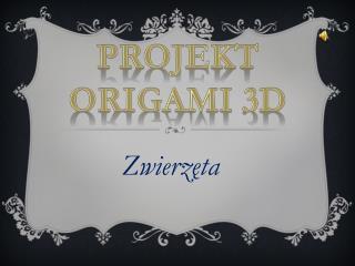Projekt Origami  3d