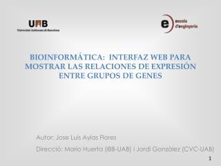 BIOINFORMÁTICA:  INTERFAZ WEB PARA MOSTRAR LAS RELACIONES DE EXPRESIÓN ENTRE GRUPOS DE GENES