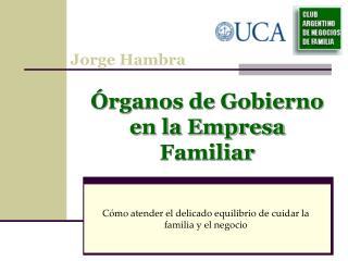 Órganos de Gobierno en la Empresa Familiar