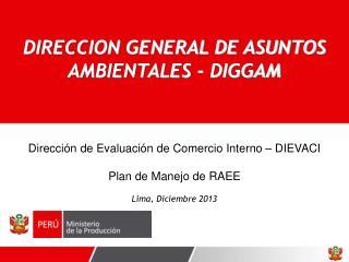 Dirección de Evaluación de Comercio Interno – DIEVACI Plan de Manejo de RAEE  Lima, Diciembre 2013