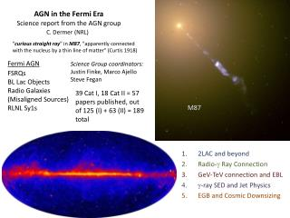 AGN in the Fermi Era Science report from the AGN group