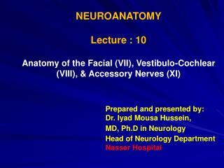 NEUROANATOMY Lecture : 10
