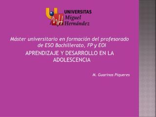 Máster universitario en formación del profesorado de ESO Bachillerato, FP y EOI