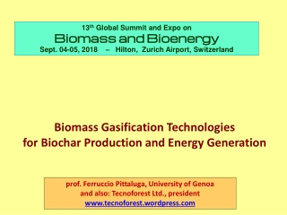Effect of experimental conditions  on biomass gasification  in an entrained-flow reactor