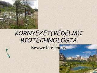 KÖRNYEZET ( VÉDELM ) I BIOTECHNOLÓGIA