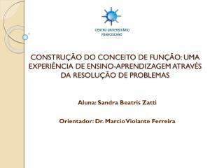 Aluna: Sandra  Beatris Zatti Orientador: Dr. Marcio  Violante  Ferreira