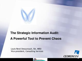 The Strategic Information Audit:  A Powerful Tool to Prevent Chaos