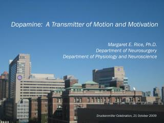Dopamine:  A Transmitter of Motion and Motivation Margaret E. Rice, Ph.D.