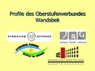 Profile des Oberstufenverbundes Wandsbek