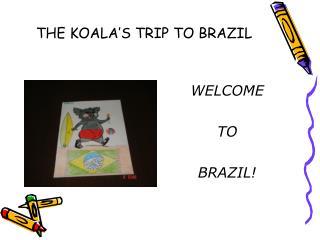 THE KOALA'S TRIP TO BRAZIL