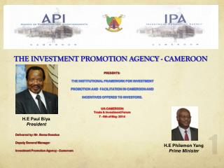 THE INVESTMENT PROMOTION AGENCY - CAMEROON