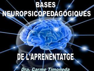 BASES  NEUROPSICOPEDAGÓGIQUES