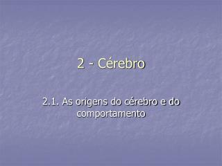 2 - Cérebro