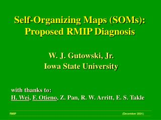 Self-Organizing Maps (SOMs): Proposed RMIP Diagnosis