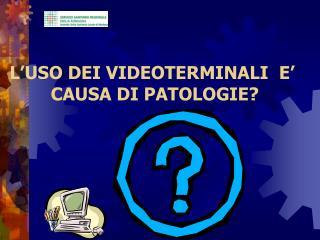 L'USO DEI VIDEOTERMINALI  E'  CAUSA DI PATOLOGIE?