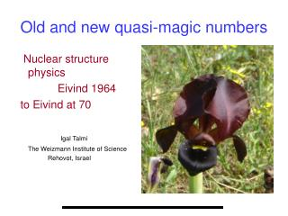 Old and new quasi-magic numbers