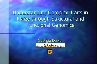 Understanding Complex Traits in Maize through Structural and Functional Genomics