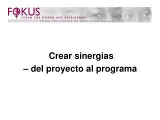 Crear sinergias  – del proyecto al programa