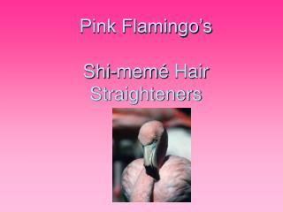 Pink Flamingo's Shi-mem é  Hair Straighteners