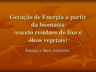 Geração de Energia a partir da biomassa (exceto resíduos do lixo e óleos vegetais)