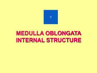 MEDULLA OBLONGATA INTERNAL STRUCTURE