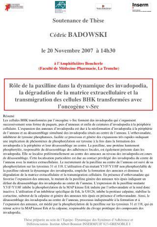 Soutenance de Thèse Cédric  BADOWSKI  le 20 Novembre 2007  à 14h30 à l'Amphithéâtre Boucherle