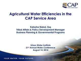 Agricultural Water Efficiencies in the  CAP Service Area
