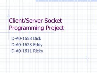Client/Server Socket Programming Project