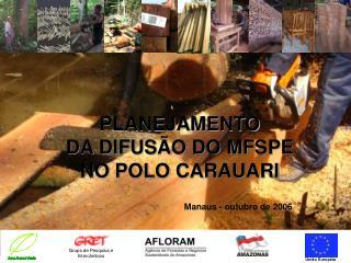 PLANEJAMENTO  DA DIFUSÃO DO MFSPE  NO POLO CARAUARI