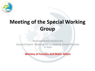 Meeting of the Special Working Group