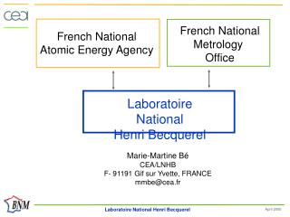 French National Atomic Energy Agency