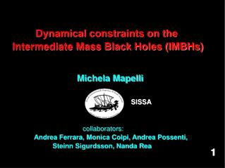 Dynamical constraints on the  Intermediate Mass Black Holes (IMBHs)