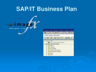 SAP/IT Business Plan
