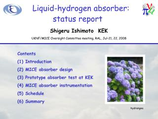Liquid-hydrogen absorber: