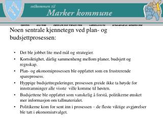 Noen sentrale kjennetegn ved plan- og budsjettprosessen:
