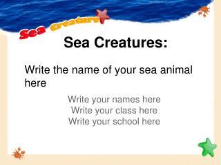 Sea Creatures:
