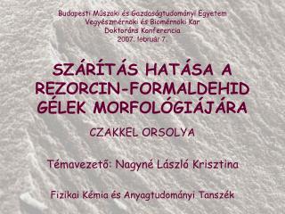 SZÁRÍTÁS HATÁSA A REZORCIN-FORMALDEHID GÉLEK MORFOLÓGIÁJÁRA
