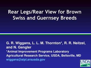 Rear Legs/Rear View for Brown Swiss and Guernsey Breeds
